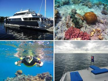 Blog Great Barrier Reef